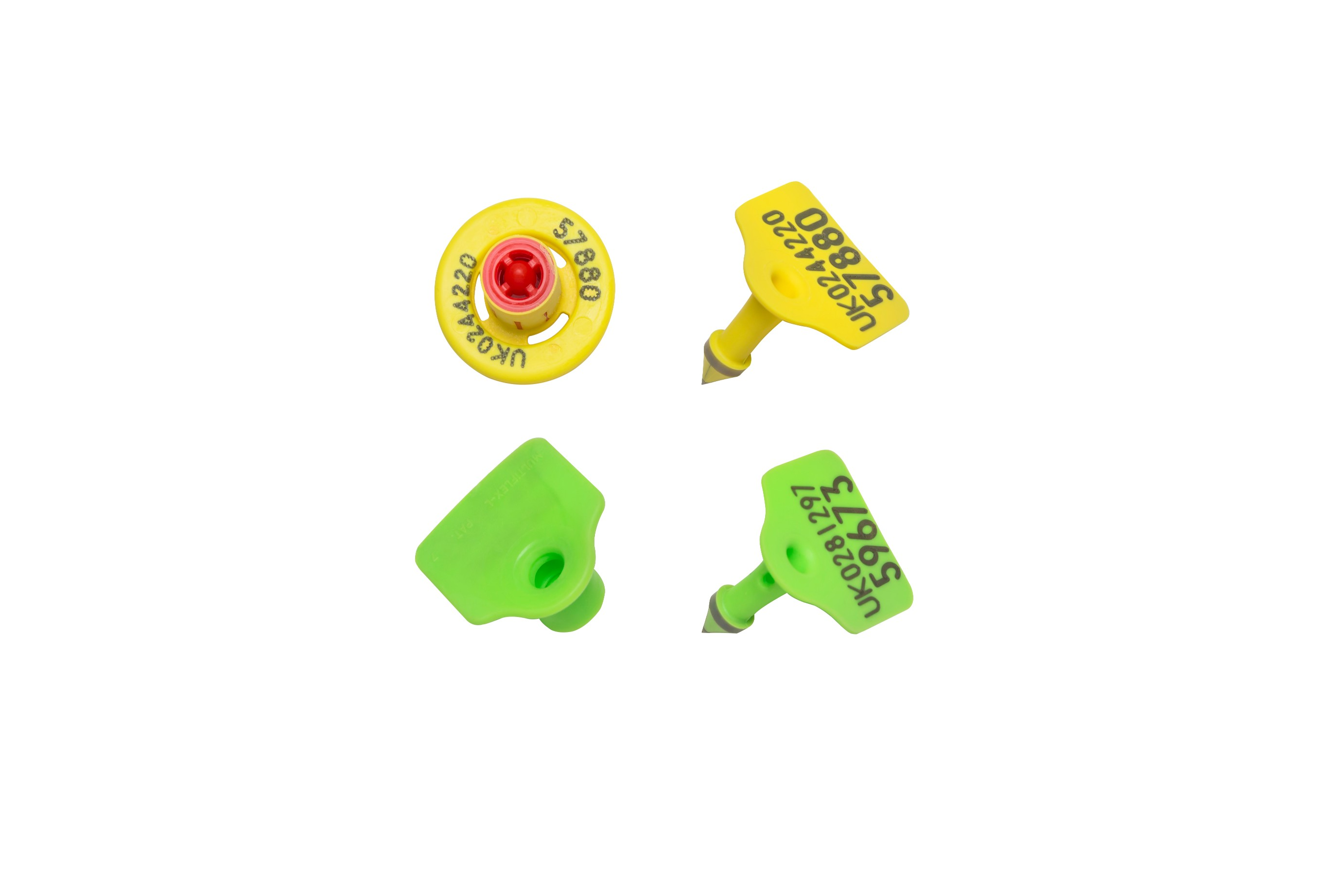 Caisley FLEXO EID Button tag set