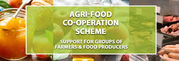 AGRI FOOD WEB BANNER page 2