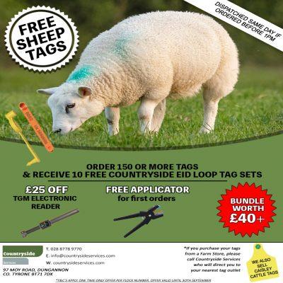 sheep tag ad FINAL FACEBOOK